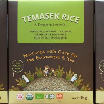 Temasek Rice